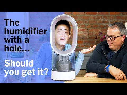 Should You Get the Futuristic Dyson AM10 Humidifier?