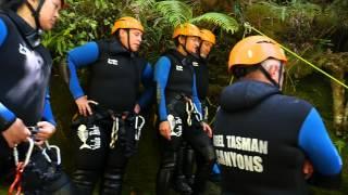 Dive into Adventure - Abel Tasman
