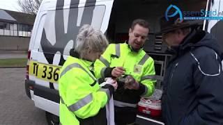 Hovenier redt Vlaamse gaai in Assen