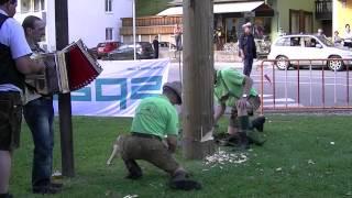 Der Maibaum fällt in Gußwerk bei Mariazell