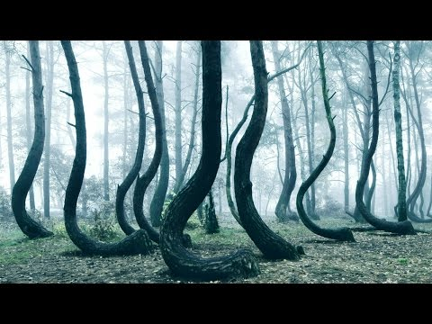 10 Most Mysterious Places On Earth
