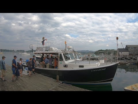 Acadia Deep Sea Fishing Tours In Southwest Harbor