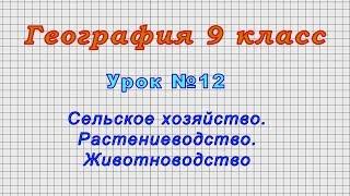 География 9 класс (Урок№12 - Сельское хозяйство. Растениеводство. Животноводство.)
