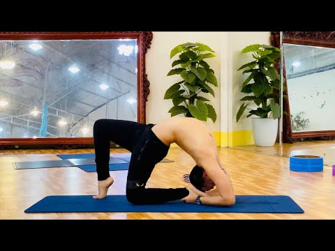 stretch yoga for beginners practice at home  master
