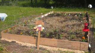 Step By Step On A No Dig Garden