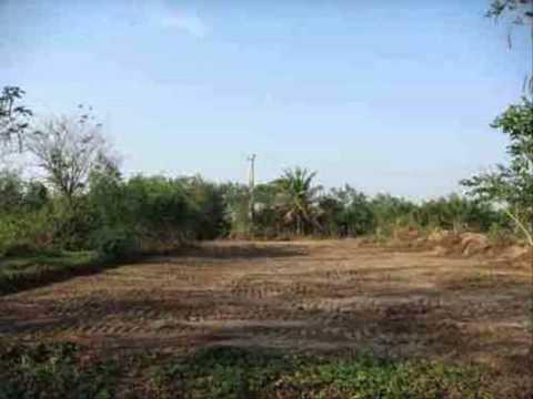 ที่ดินสามพราน บ้านและที่ดินธนาคารกรุงไทย