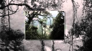 Sông lô chiều cuối năm - Doãn Tần