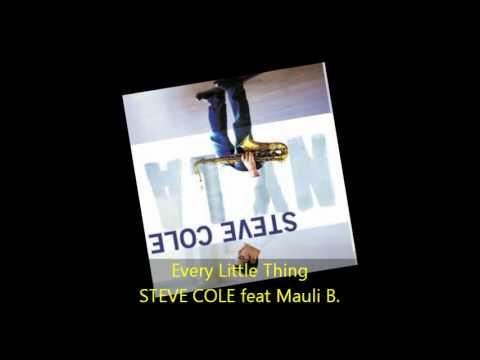 Steve Cole - EVERY LITTLE THING feat Mauli B.