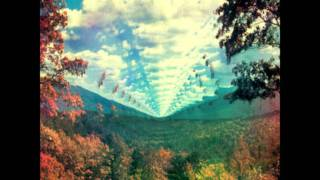 It is not meant to be - Tame Impala