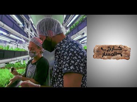 خارج المسار - النساء تبدع.. طرق مبتكرة للزراعة داخل الحاويات  - 16:54-2021 / 8 / 2