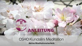 Anleitung OSHO Kundalini Meditation
