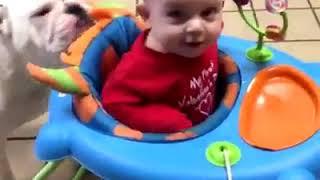 #9 Los bebés más graciosos del mundo 💚 💙 💜Videos de bebés bailando y cantando 2020