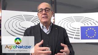 Next generation EU: quali fondi per l'agricoltura?