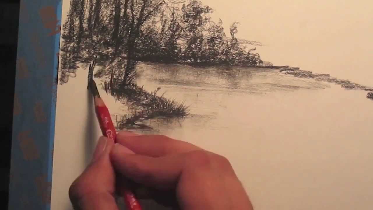 How to draw rainforest trees youtube