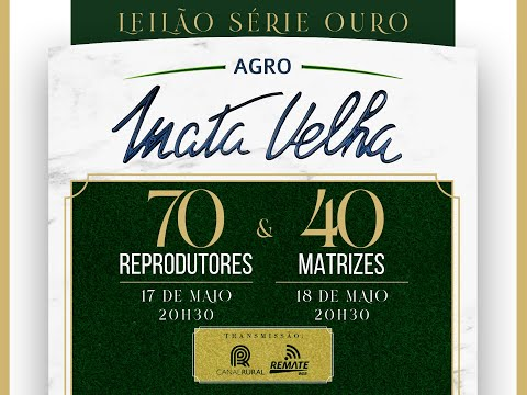 Lote 73   Argato FIV Lei Mata Velha   MATJ 217 Copy