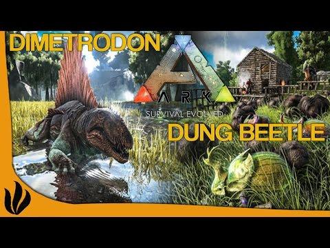 [FR] ARK: Survival Evolved - Dimetrodon & Dung Beetle !