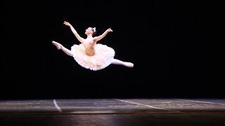 Ballet - o vôo da bailarina