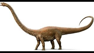 Рассказы о доисторических животных #6-диплодок