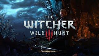 Тест The Witcher 3 Wild Hunt на слабом ноутбуке INTEL CORE I3 1.8Ghz,6GB,GT-820M 1 GB .