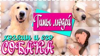 ТИПЫ ЛЮДЕЙ// собака и его хозяин, ЗОЛОТИСТЫЙ РЕТРИВЕР