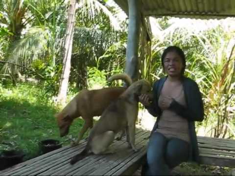 Marife And I Have A Nice Long Talk About Life Together A BlindOwl Outdoors Expat Philippines Foreign