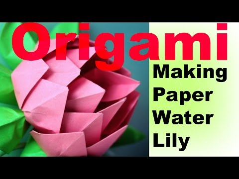 DIY How to Make Water Lily / Lotus Flower with Paper | Paper ... | 360x480