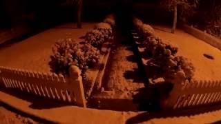 Выпал мокрый снег   съёмка в темное время суток вдоль низкого забора