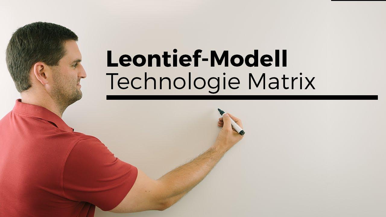 Leontief-Modell, Technologie Matrix, Bedeutung Koeffizienten, plus ...