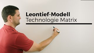 Leontief-Modell, Technologie Matrix, Bedeutung Koeffizienten, plus Tabelle, Mathe by Daniel Jung