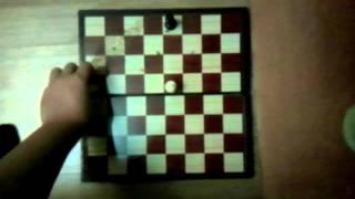 Учимся играть в шахматы. Урок 1: как ходят фигуры