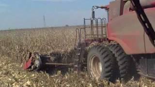 case ih 7120 harvesting corn in south africa