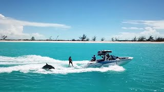 Wakeboarders Surf With Dolphins