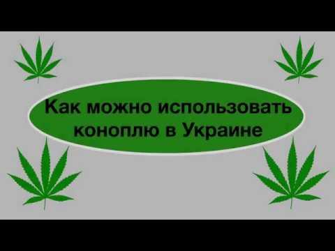 Вызвать отвращение к конопле скачать песню про марихуану