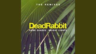 Mind the Gap (feat. Sola Plexus) (Symbiz Remix)