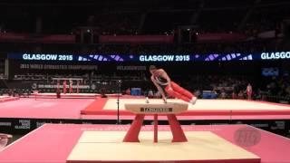 RZEPA Adam (POL) - 2015 Artistic Worlds - Qualifications Pommel Horse