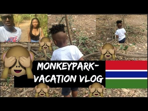 Vacation Vlog  - Gambia 2016 - The Manneh Twinzz