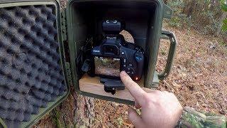 Video DSLR Camera Trapping: Part 1 download MP3, 3GP, MP4, WEBM, AVI, FLV November 2018