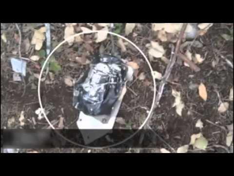 Jenny Rivera Plane Crashed Pelo Tacos Licencia Partes del ...