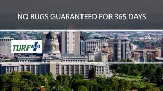 Pest Control Salt Lake City: 365 Day No Bugs Guaranteed - Turf Plus Utah