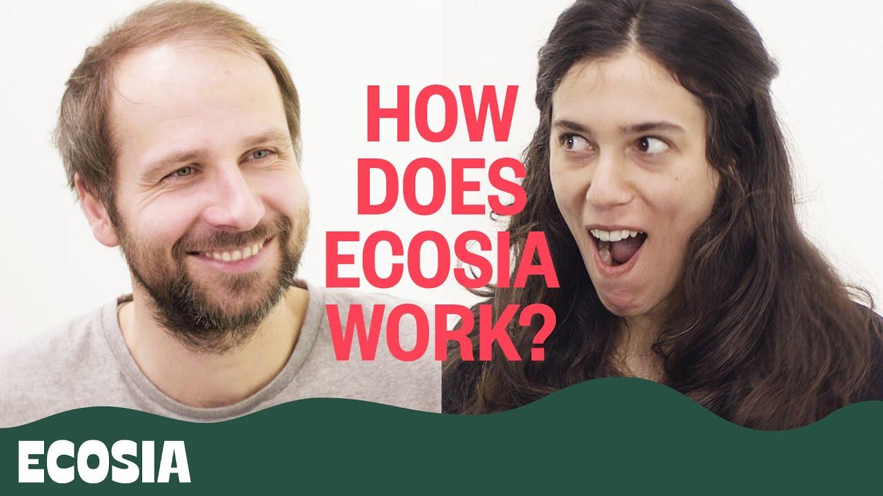 Ist Ecosia wirklich besser als die Google-Suche? 3 Fakten