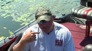 vuclip Bass under the shallow log