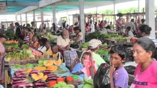 ROSIGNOL  FISH MARKET TODAY-GUYANA FISH MARKET-Bill Rogers-The weed song.