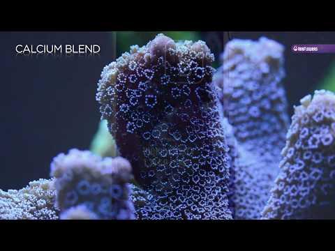Reeflowers Calcium Blend