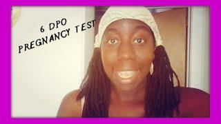 ttc vlog 192 6 dpo pregnancy test cd 24 my daily planner opk 2015