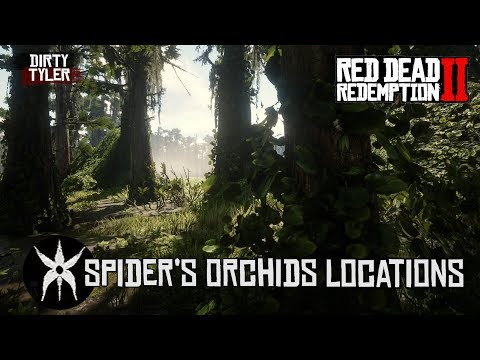 All Spider Orchid Locations Red Dead Redemption 2 RDR2