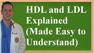 HDL and LDL Explained (Made Easy to Understand)