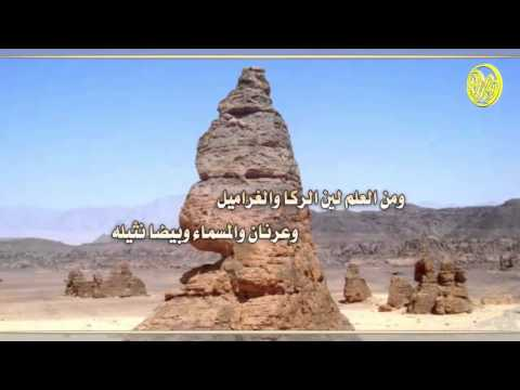 شيلة يانجد || كلمات عبدالعزيز ابن نحيان المهلكي || اداء ضيف الله الميزاني