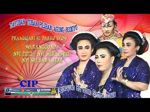 09 Ronggolawe Tuban - Jambu Alas