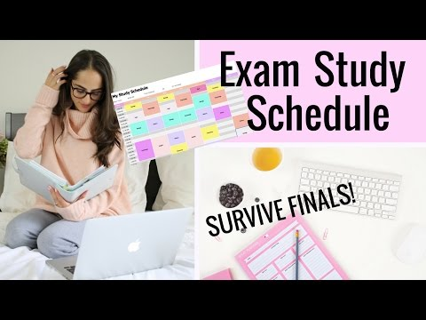 How To Study For Finals | Exam Study Schedule Tips!