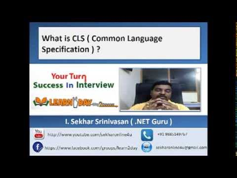 what is CLS ( Common Language Specification )